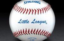 Spalding Little League Baseball
