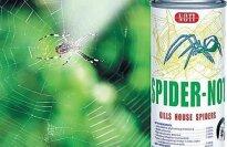 Spider Not Aerosol Kills Spiders