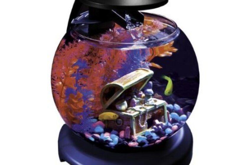 GloFish Globe 1.8 Gallon Aquarium Kit With Waterfall