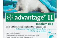 Bayer Advantage II Flea Control