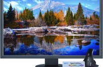 "NEC Monitor EA304WMI-BK-SV 30"" Screen LED-Lit Monitor"