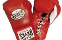 Cleto Reyes Official Pro-fight Gloves