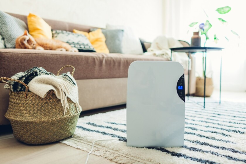 get the best dehumidifiers for your home