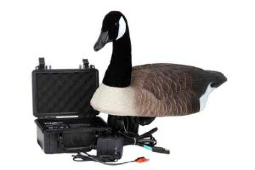 Higdon Decoy Swimmer Goose