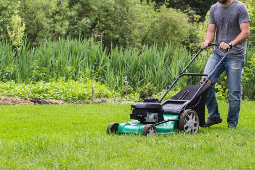 The Evolution of Mowing Grass
