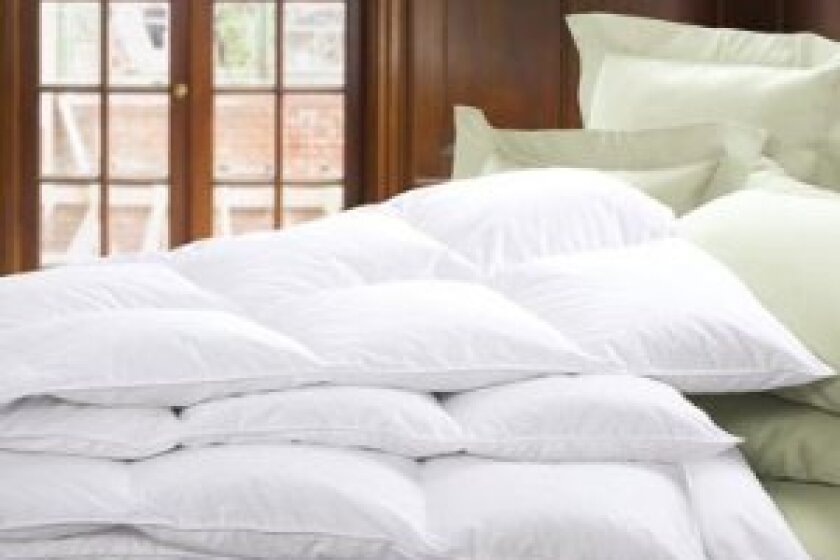Cuddledown Primary Down Comforter