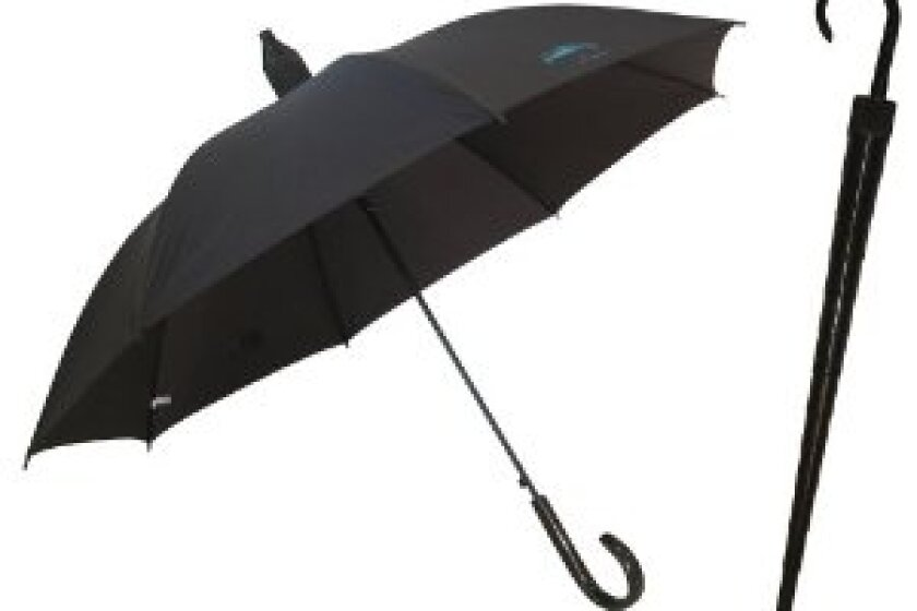 No Drip Rain Umbrella
