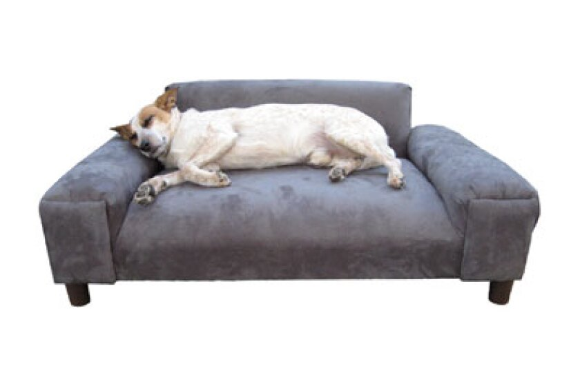 Big Dog Beds Furniture Gustavo Pet Sofa Bed
