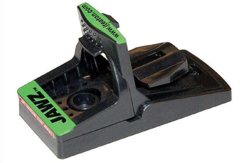 JT Eaton 409BULK Jawz Plastic Mouse Trap