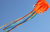 Kengel Orange Software Octopus Kid's Kite