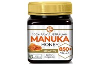 Best High Grade Honey Organic Manuka Honey