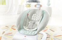 Sweet Surroundings Deluxe Bouncer