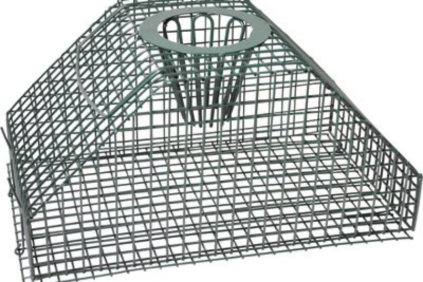 Advantek Multi-Animal Catch & Release Rodent Trap