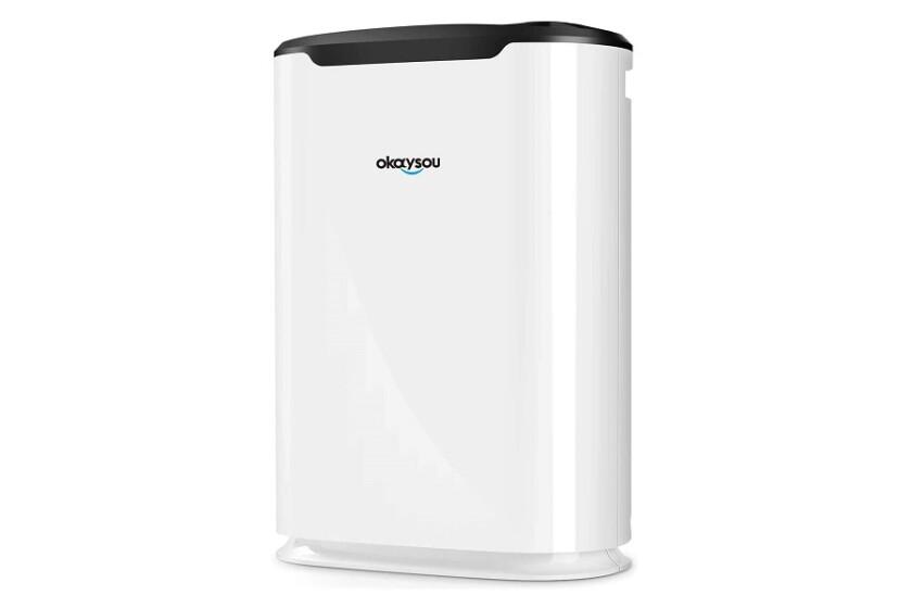 okaysou airmax 8l air purifier.jpg
