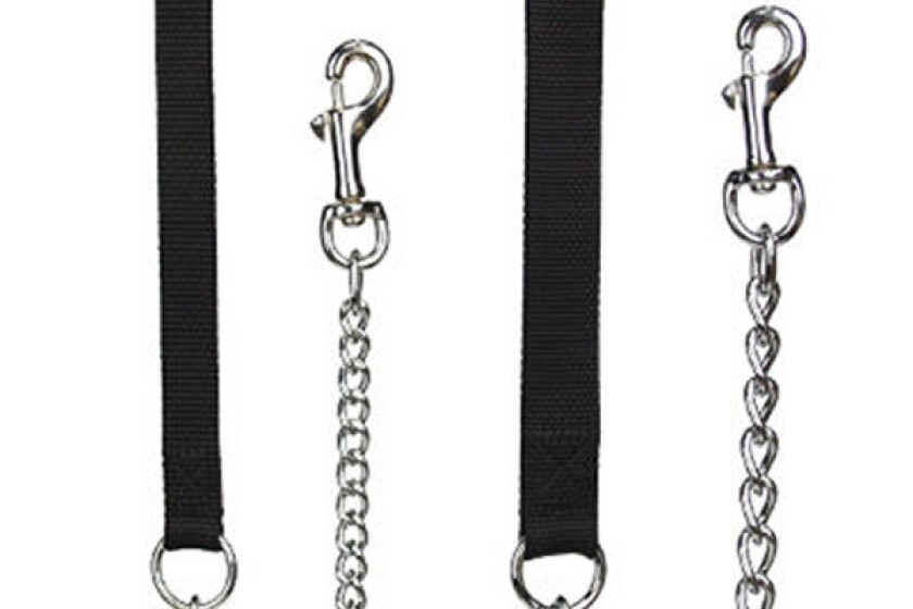 Top Paw Titan Chrome Dog Chain with Handle