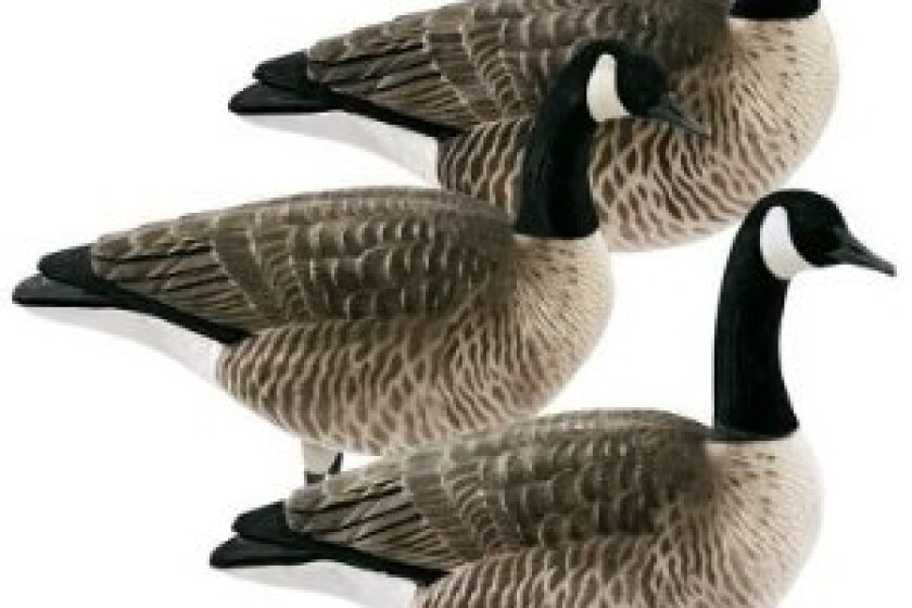 Greenhead Gear FFD Elite Canada Goose Decoy