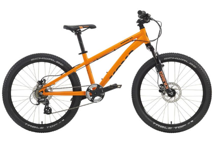 Kona Shred 24 Kids Mountain Bike