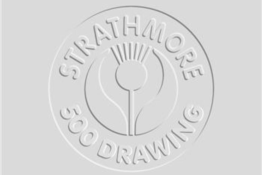 Strathmore 500 Series Drawing Paper, Medium Surface