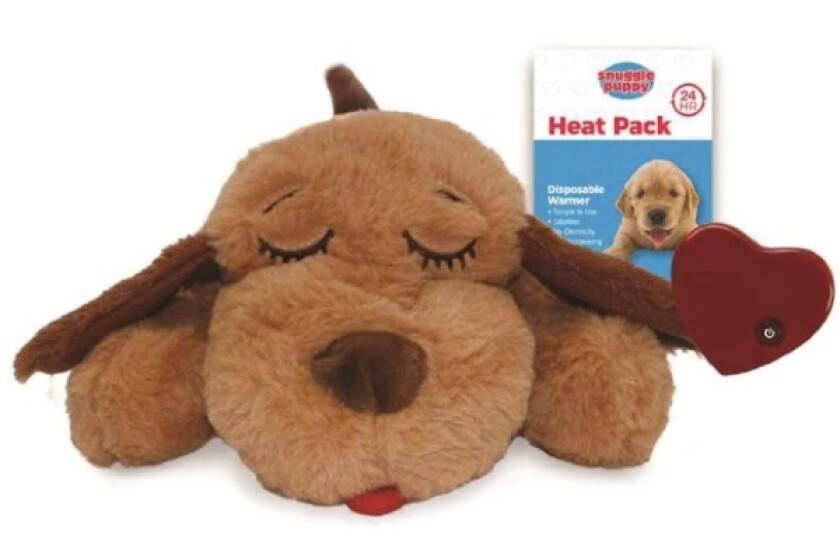 Best Puppy Accessories