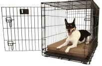 Big Barker Crate Pad Dog Bed